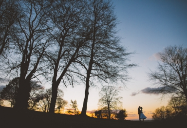 Coombe Lodge Silhouette