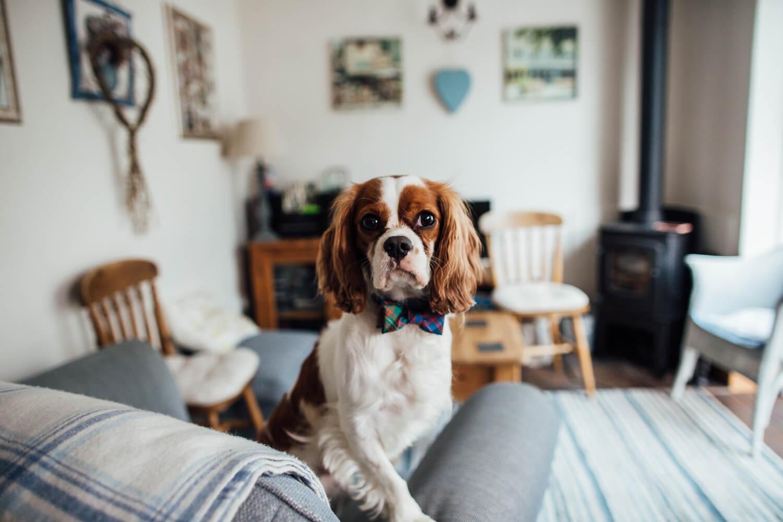 2018 64 | Bristol Wedding Photographer